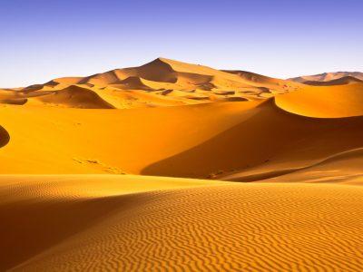 trek desert Sahara