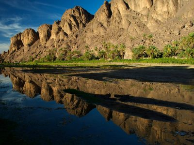 excursion Oaurzazate oasis de Fint