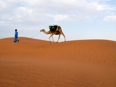 randonnée dromadaire désert Maroc
