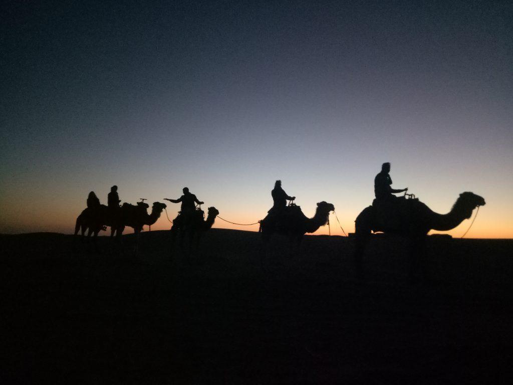 balade dromadaire desert